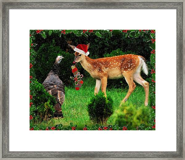 Christmas Wild Turkey And Fawn Framed Print by Angel Cher