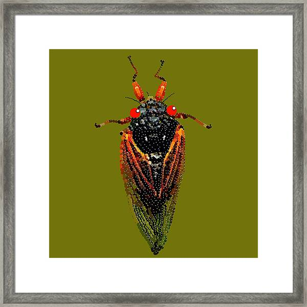 Cicada In Green Framed Print