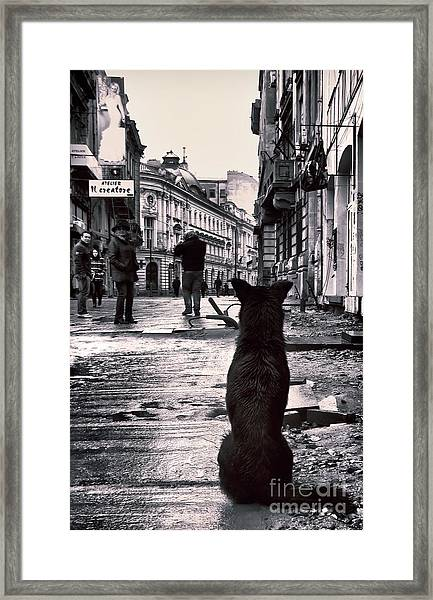 City Streets And The Theory Of Waiting Framed Print