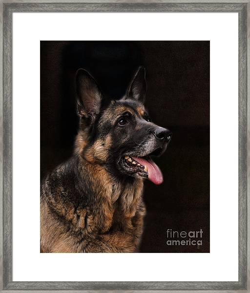 Classic German Shepherd Framed Print