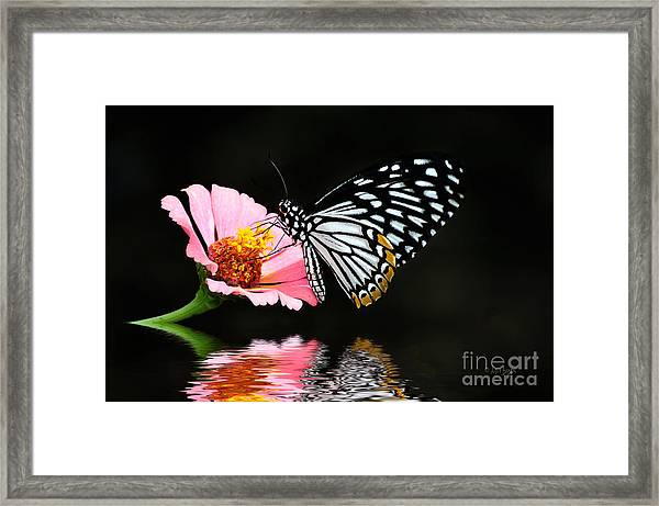 Framed Print featuring the photograph Cliche by Lois Bryan