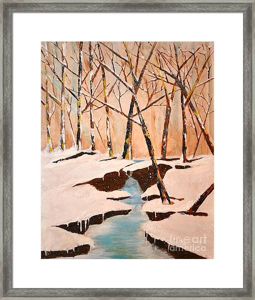 Cliffy Creek Framed Print