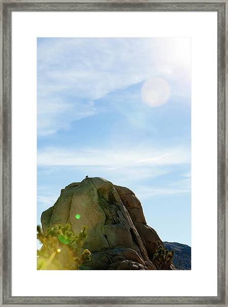 Climbing Joshua Tree National Park Framed Print