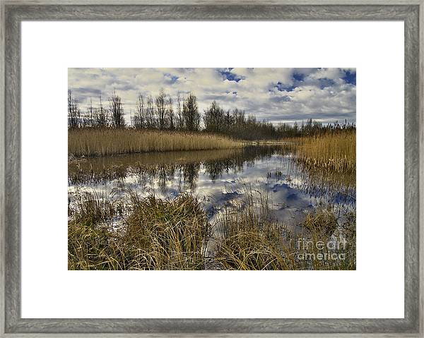 Cloud Reflections Framed Print