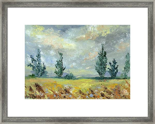 Cloudy Landscape Before The Rain Framed Print