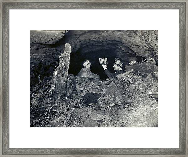 Coal Miners With A Canary Framed Print by Miriam And Ira D. Wallach Division Of Art, Prints And Photographs/new York Public Library