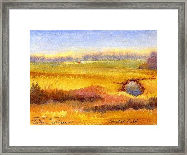 Coastal Gold Framed Print