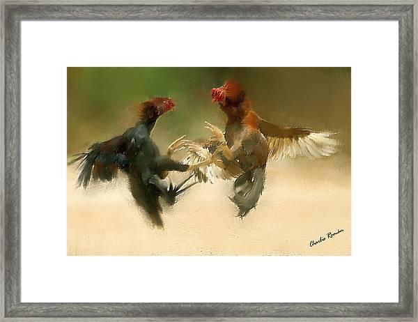 Cockfight Framed Print