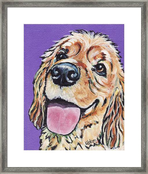 Cocker Spaniel Framed Print