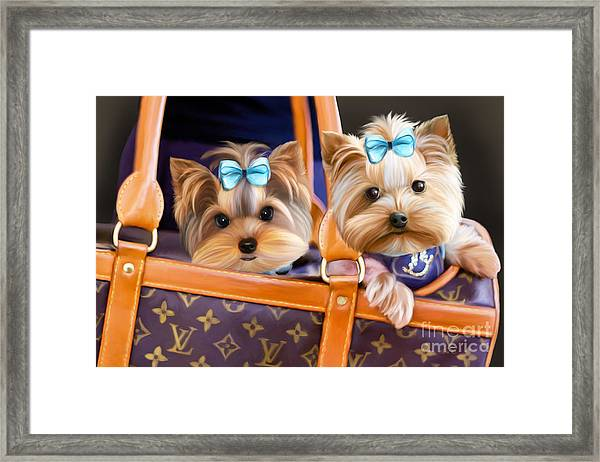 Coco And Lola Framed Print