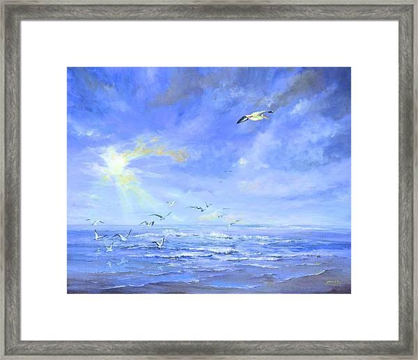 Cocoa Beach Birds Framed Print