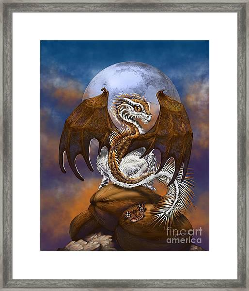 Coconut Dragon Framed Print