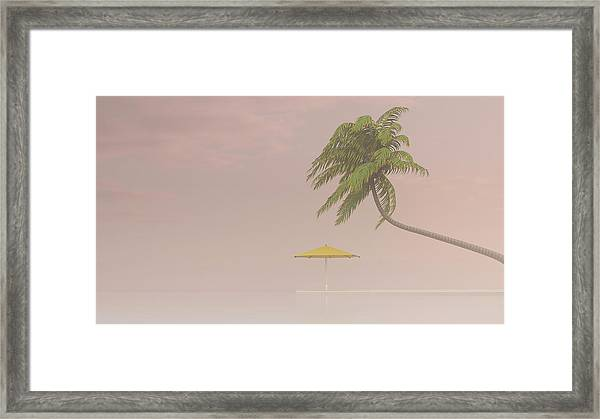 Coconut Palm And Sunshade In Haze, 3d Framed Print