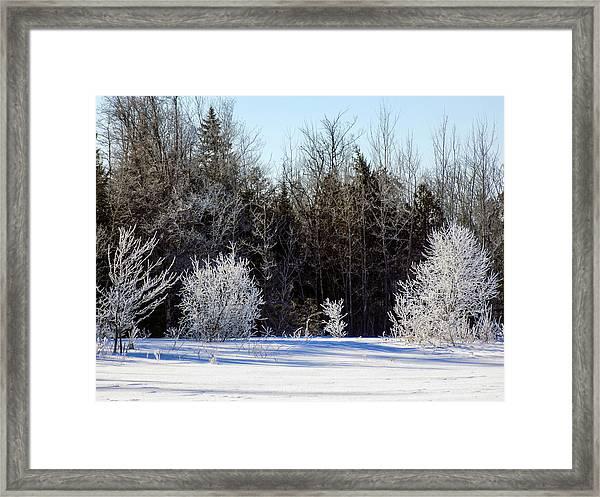 Cold Magic Framed Print