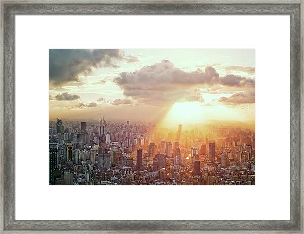 Collect The Sunshine Framed Print