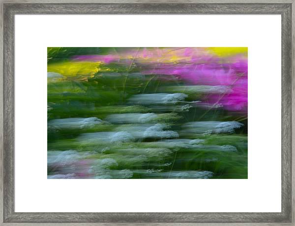 Color Blown Framed Print