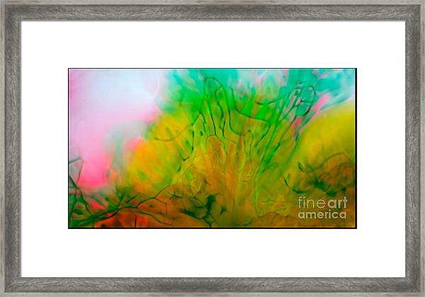 Color Formations II Framed Print