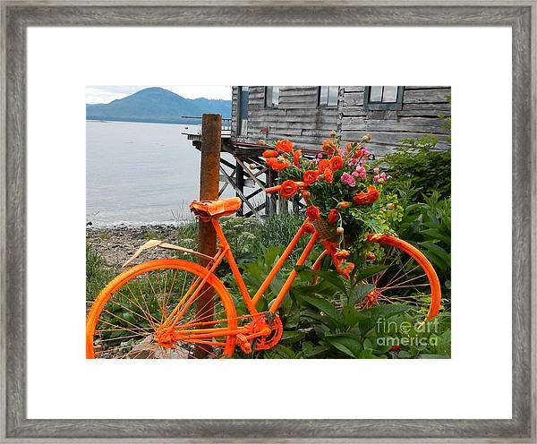 Color Of Tenakee  Framed Print