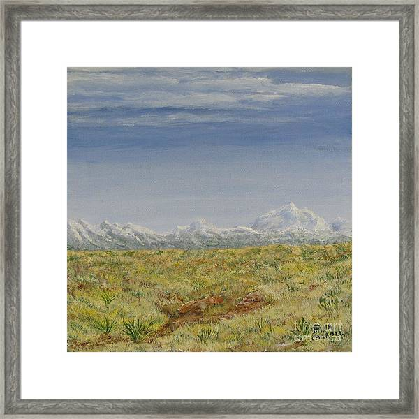 Colorado Eastern Plains Framed Print by Dana Carroll