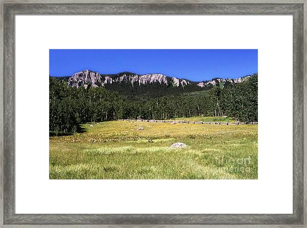 Colorado Field Framed Print by Alan Russo
