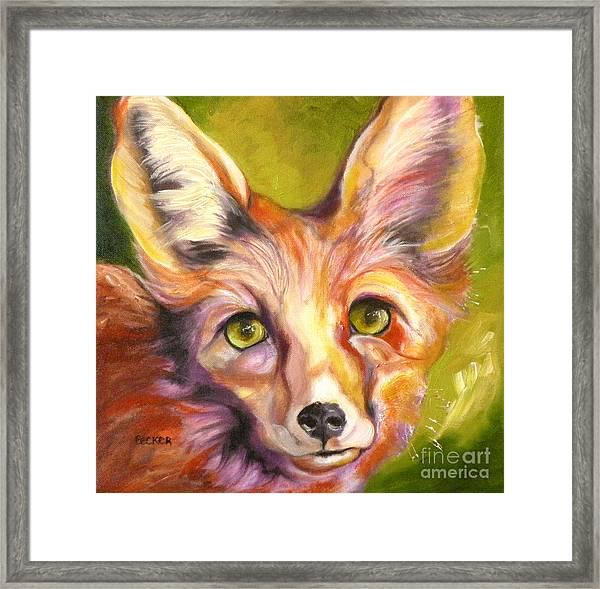 Colorado Fox Framed Print