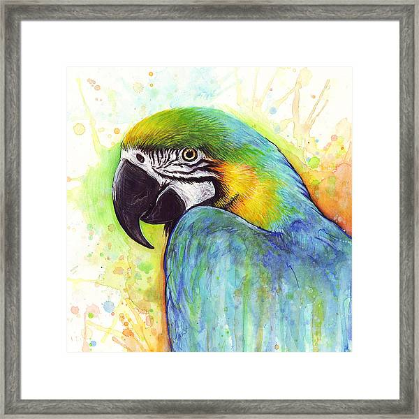 Macaw Watercolor Framed Print
