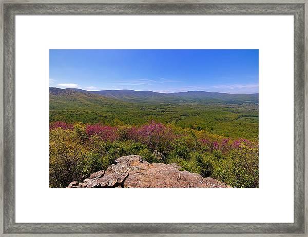 Colorful Blue Ridge Spring Framed Print