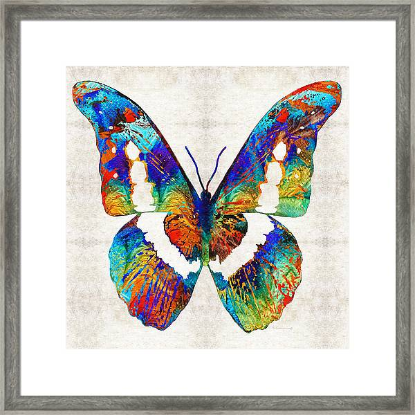 Colorful Butterfly Art By Sharon Cummings Framed Print