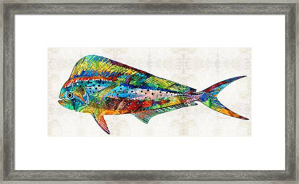 Colorful Dolphin Fish By Sharon Cummings Framed Print