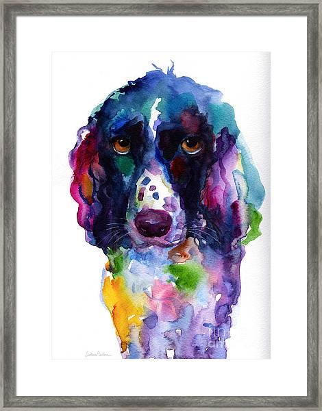 Colorful English Springer Setter Spaniel Dog Portrait Art Framed Print