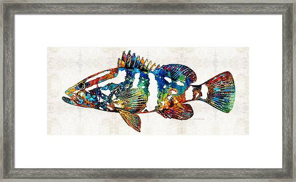 Colorful Grouper 2 Art Fish By Sharon Cummings Framed Print