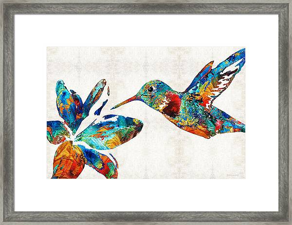 Colorful Hummingbird Art By Sharon Cummings Framed Print