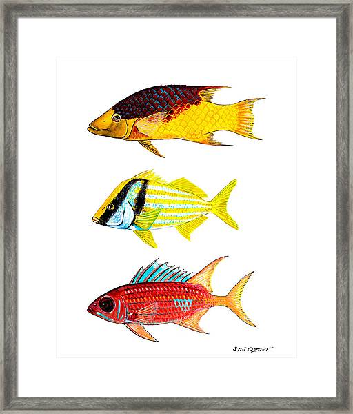 Colorful Locals Framed Print