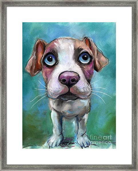 Colorful Pit Bull Puppy With Blue Eyes Painting  Framed Print