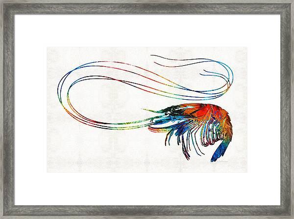 Colorful Shrimp Art By Sharon Cummings Framed Print