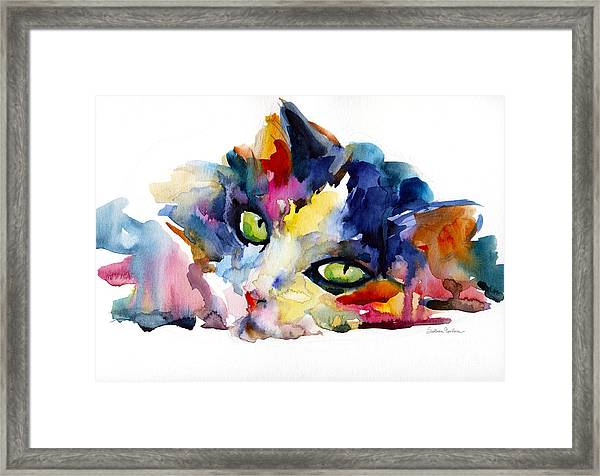 Colorful Tubby Cat Painting Framed Print