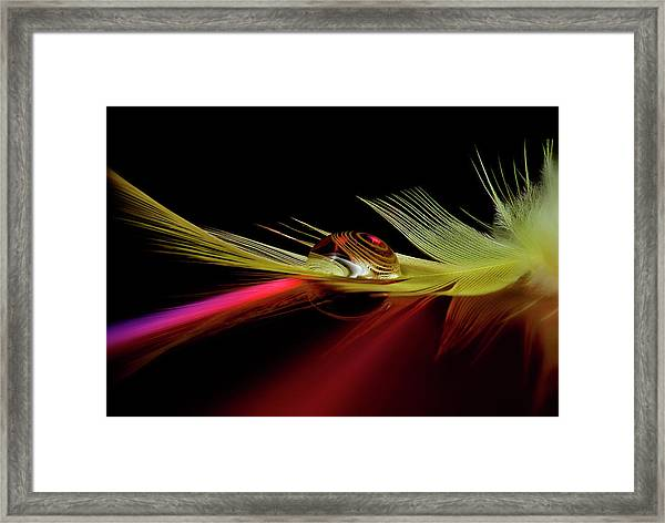 Colors In The Drop Framed Print