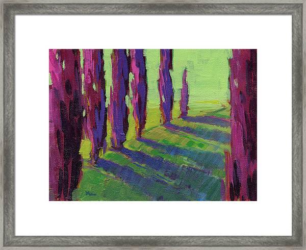 Colors Of Summer 1 Framed Print