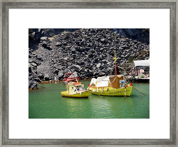 Colourful Contrasts Framed Print