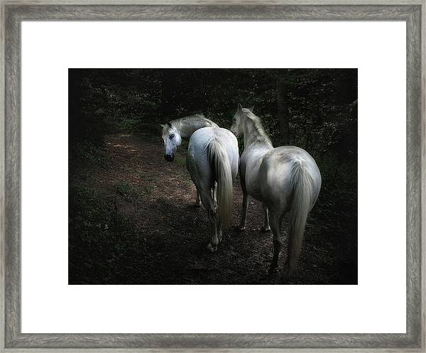 Come .. Framed Print by Holger Droste