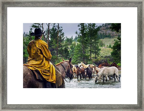 Come Rain Or Come Shine Framed Print