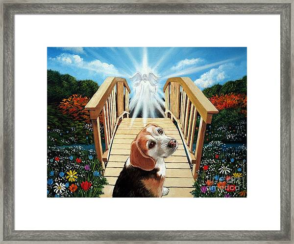Come Walk With Me Over The Rainbow Bridge Framed Print