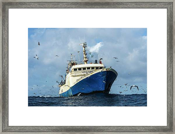 Commercial Purse-sein Trawler Framed Print by Peter Chadwick