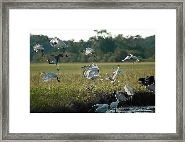 Community Uplift Framed Print