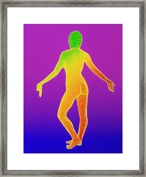 Computer Contour Map Of A Female Body (back View) Framed Print by Dr Robin Williams/science Photo Library