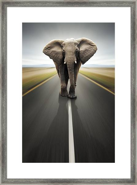 Heavy Duty Transport / Travel By Road Framed Print
