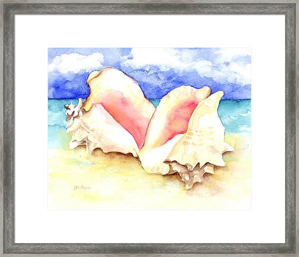 Conch Shells On Beach Framed Print