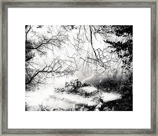 Confusion Of The Senses Framed Print