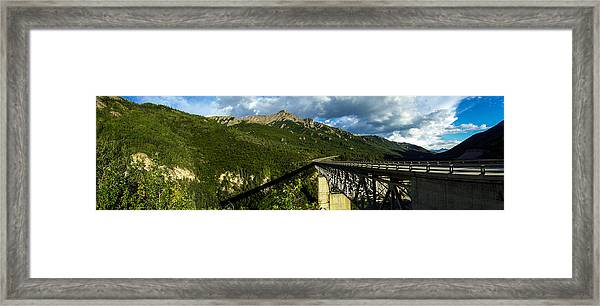 Connecting Life Framed Print