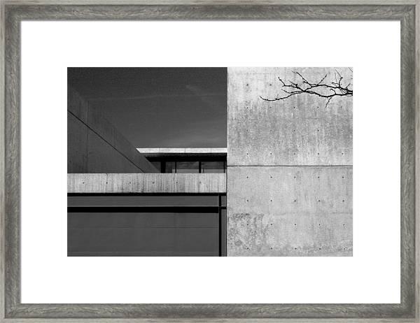 Contemporary Concrete Block Architecture Tree Framed Print